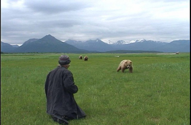 grizzly-man1000