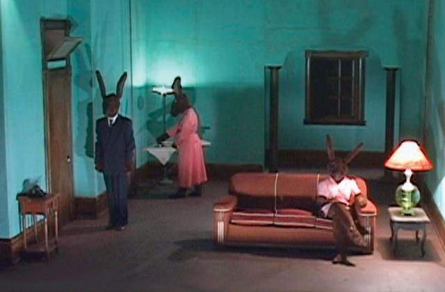 01-rabbits