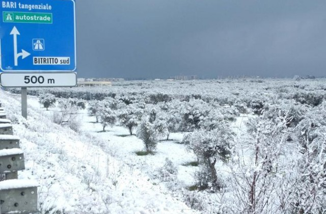 MALTEMPO: POCA NEVE IN PUGLIA, TEMPERATURE RIGIDE