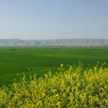 PAESAGGIO_kurdistan-9-1024x685