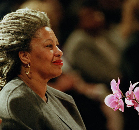 tonimorrison_ap_img