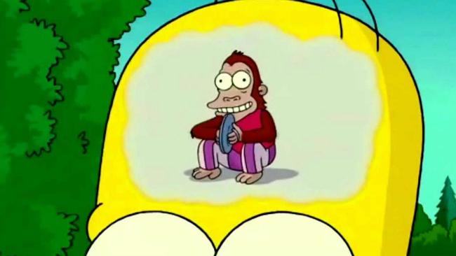 simpsonmonkey