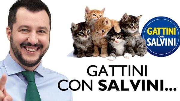 1431074366_gattiniconsalvini2