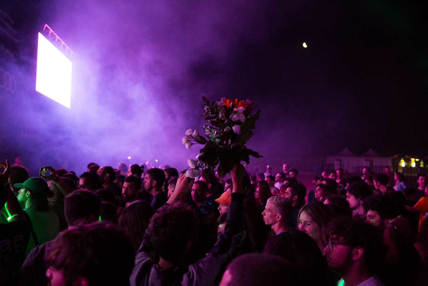 viva festival_clarissa ceci_arca
